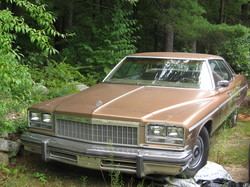 masssho666s 1976 Buick Electra