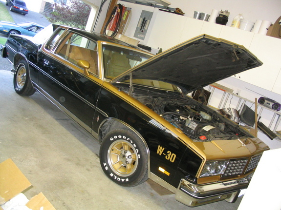 1980Olds442's 1980 Oldsmobile 442