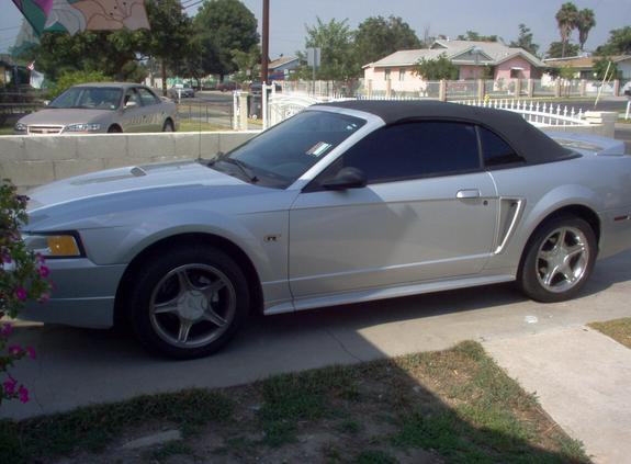 Another JeremyF 2000 Ford Mustang post... - 6902838