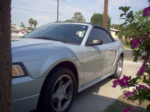 Another JeremyF 2000 Ford Mustang post... - 6902840