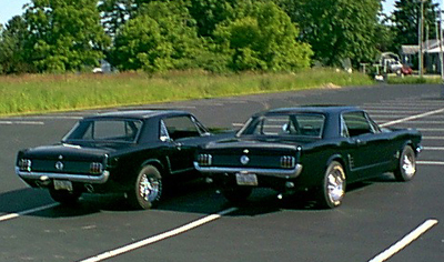 Another TOMongous 1965 Ford Mustang post... - 6923866