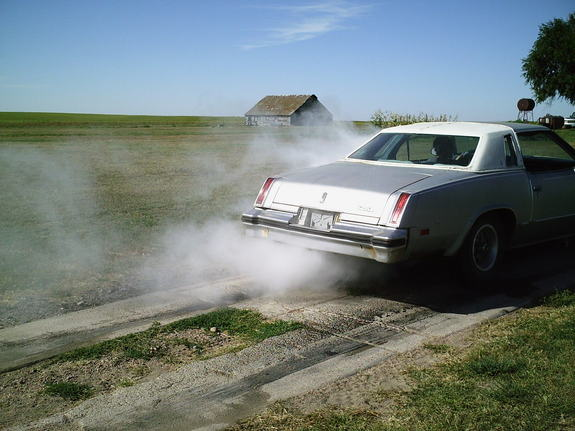 NeStang 1977 Oldsmobile Cutlass Supreme 6931556