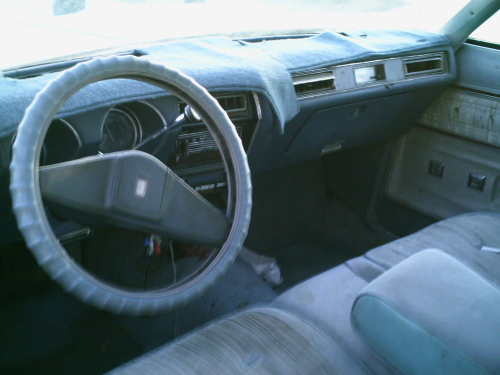 NeStang 1977 Oldsmobile Cutlass Supreme 6931560