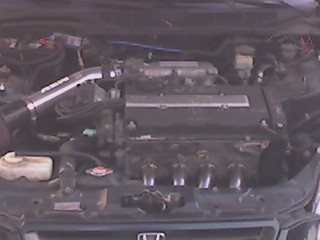 civik98 1998 Honda Civic 14423486