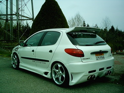 RageStyling 2005 Peugeot 206