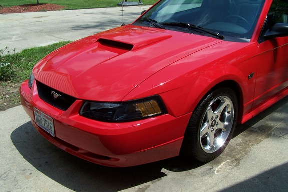 mklovell 2003 ford mustang specs photos modification. Black Bedroom Furniture Sets. Home Design Ideas