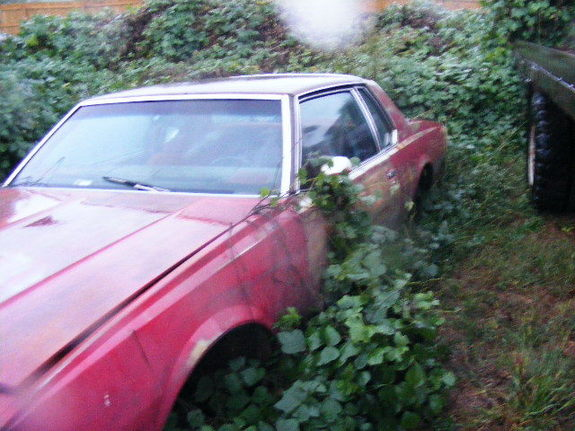 Another olskoolboy 1978 Chevrolet Caprice post... - 7114985