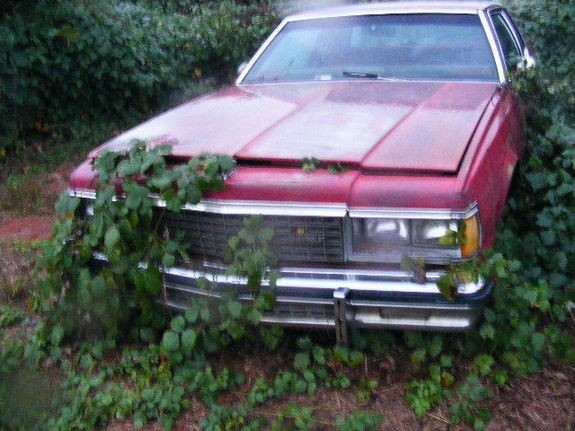 Another olskoolboy 1978 Chevrolet Caprice post... - 7114986