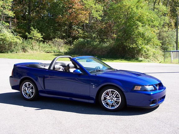 Tommy98016 2003 Ford Mustang