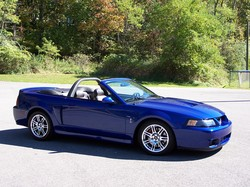 Tommy98016s 2003 Ford Mustang