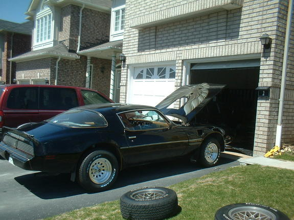 Another TransAmNapalm 1979 Pontiac Trans Am post... - 7192205