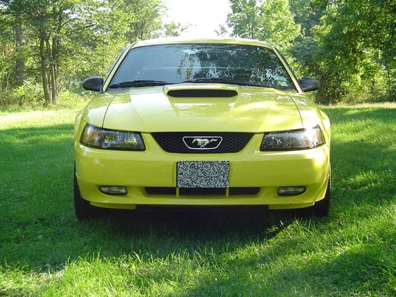 kd stang 39 s 2003 ford mustang in hammond ny. Black Bedroom Furniture Sets. Home Design Ideas