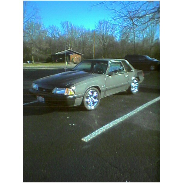 Another shadez14 1990 Ford Mustang post... - 7245316