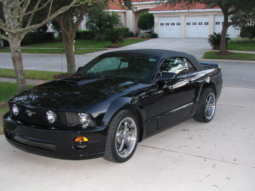 jay2themax 2005 Ford Mustang