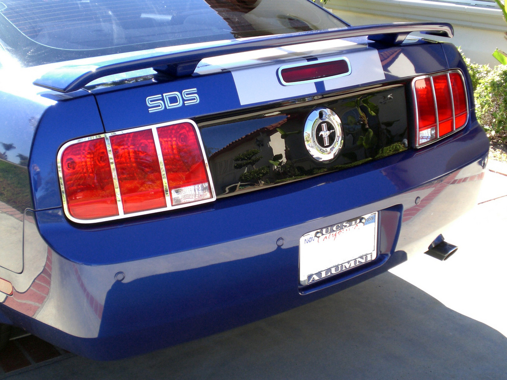 CaliPhattie 2005 Ford Mustang 7271692