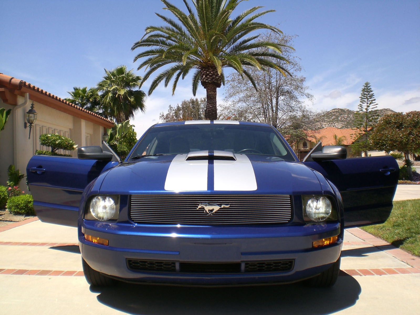 CaliPhattie's 2005 Ford Mustang