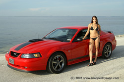 Blown03Mach1s 2003 Ford Mustang
