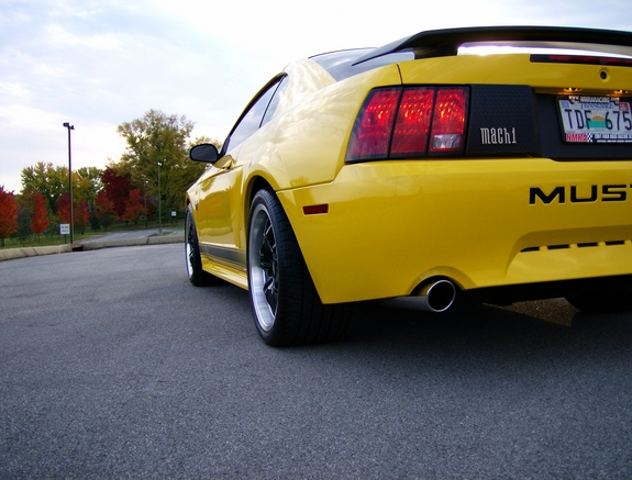 Another BlackVNM 2004 Ford Mustang post... - 7419630