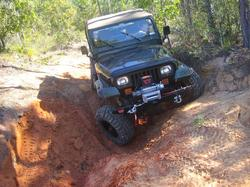 LT1JeepYJs 1995 Jeep YJ