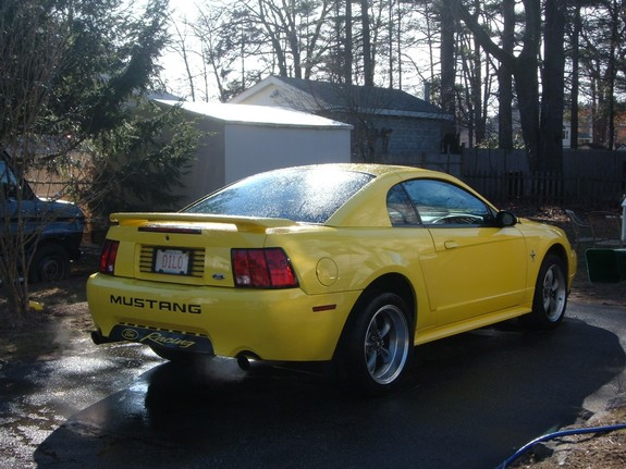 Another MustangDiLo 2001 Ford Mustang post... - 7346991