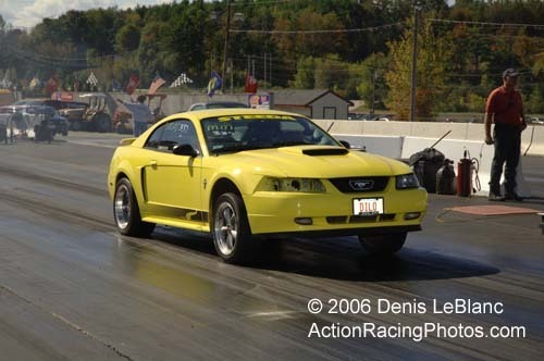 MustangDiLo 2001 Ford Mustang