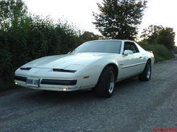 andy625 1987 Pontiac Firebird