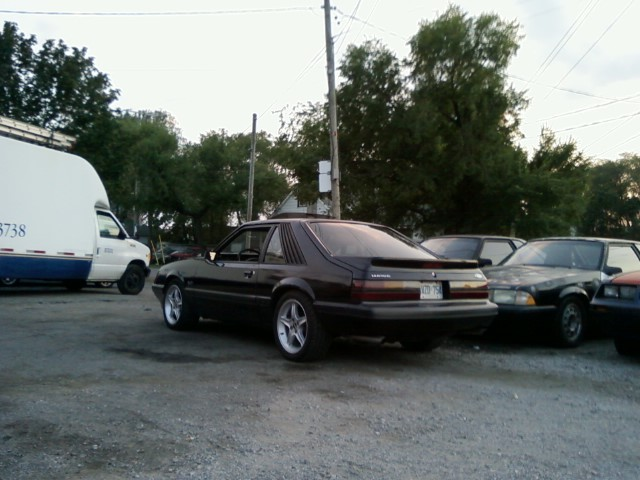 Another 86-mustang-gt 1986 Ford Mustang post... - 7495718