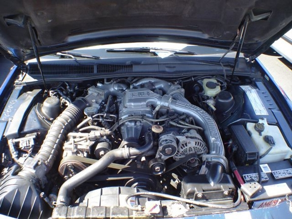Another Jankenson 1994 Ford Thunderbird post... - 7496400