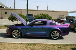 nrcollectibles 2005 Saleen Mustang