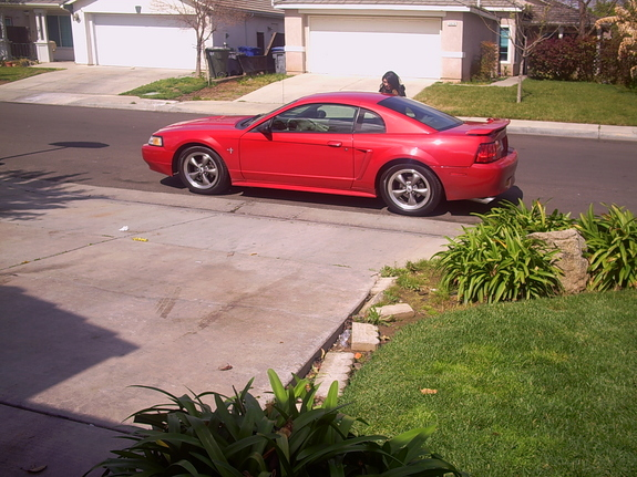 Another raymustang21 2000 Ford Mustang post... - 7575210