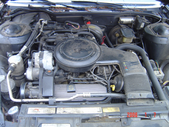 Another BigPimpinPA 1986 Cadillac DeVille post... - 7566414
