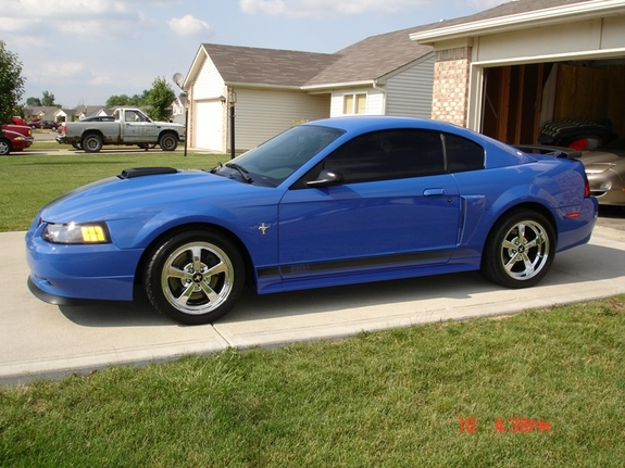ltzmach 2003 Ford Mustang Specs Photos Modification Info at