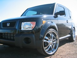 Toasting22ss 2006 Honda Element