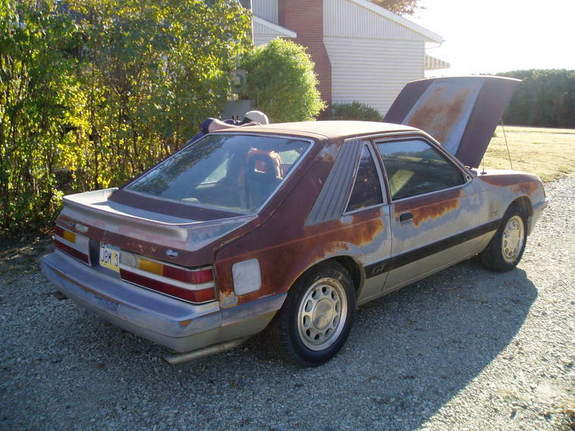 Another 85_Five_Oh 1985 Ford Mustang post... - 7664103