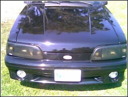 Roland69 1988 Ford Mustang 7668089