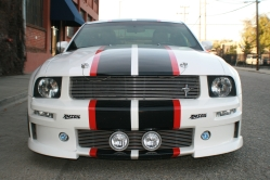 Volpones 2005 Ford Mustang