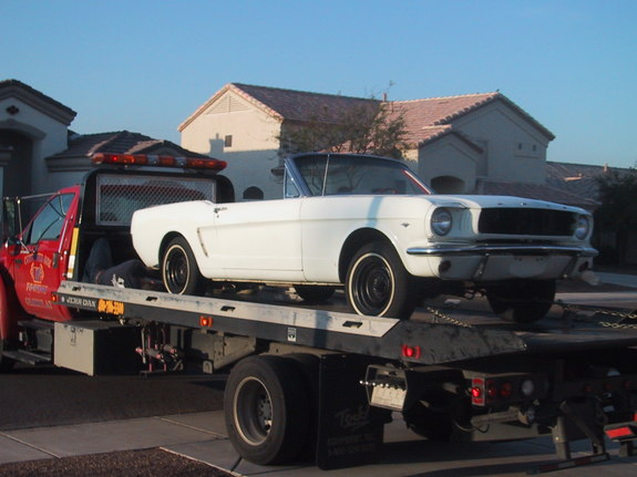 65Horsey 1965 Ford Mustang 7735150