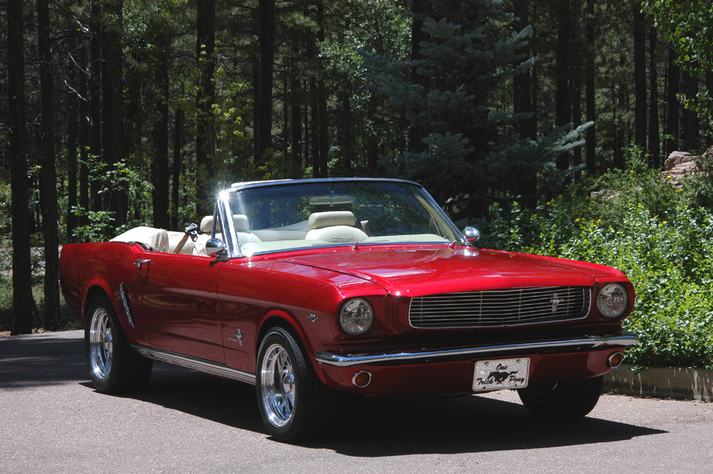 65Horsey 1965 Ford Mustang