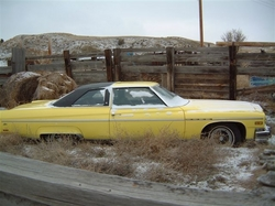 j_shea12s 1976 Buick Electra