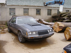 interceptereater 1979 Ford Mustang