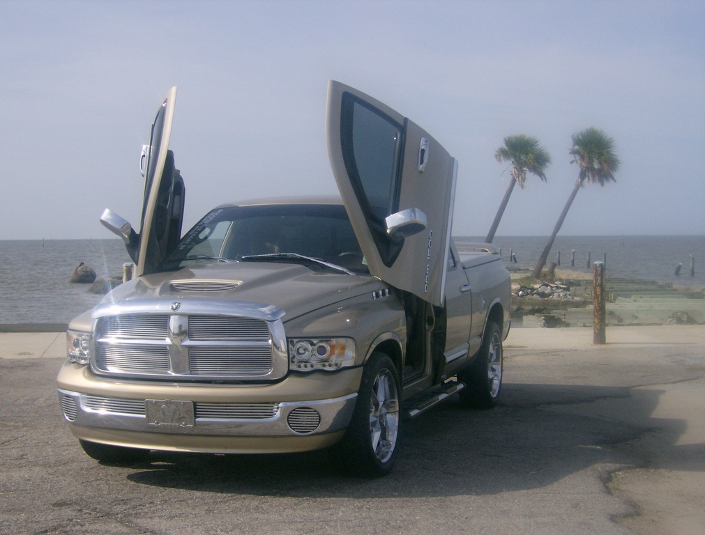 gbaby40 2002 dodge ram 1500 quad cab specs photos modification info at cardomain. Black Bedroom Furniture Sets. Home Design Ideas