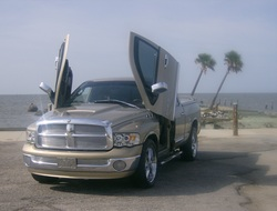gbaby40s 2002 Dodge Ram 1500 Quad Cab