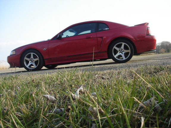 Another n2onme 2000 Ford Mustang post... - 7810077
