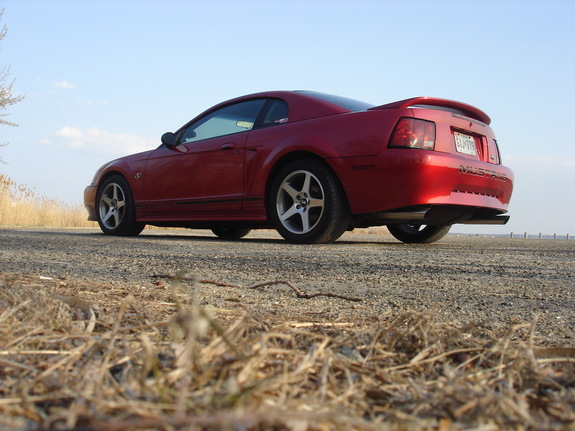 Another n2onme 2000 Ford Mustang post... - 7810078