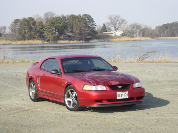 Another n2onme 2000 Ford Mustang post... - 7810079