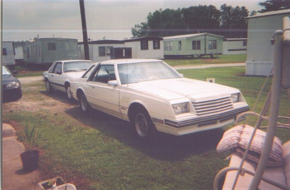 dodgemiradalover's 1982 Dodge Mirada
