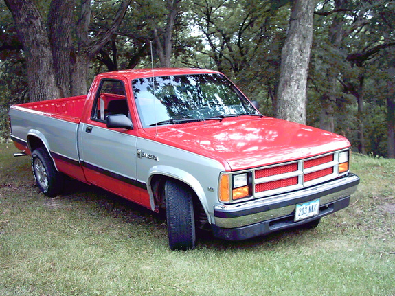 Large on 2001 Dodge Dakota 4x4