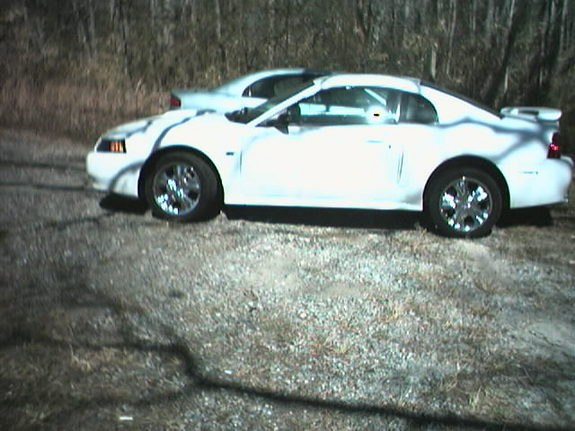 Another albess 2003 Ford Mustang post... - 7914580