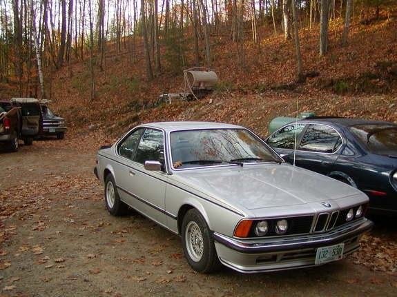 the128guy 1980 bmw 6 series specs photos modification info at cardomain. Black Bedroom Furniture Sets. Home Design Ideas