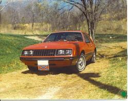 1981stang 1981 Ford Mustang